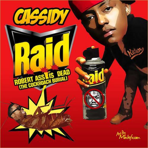 cassidyRAID