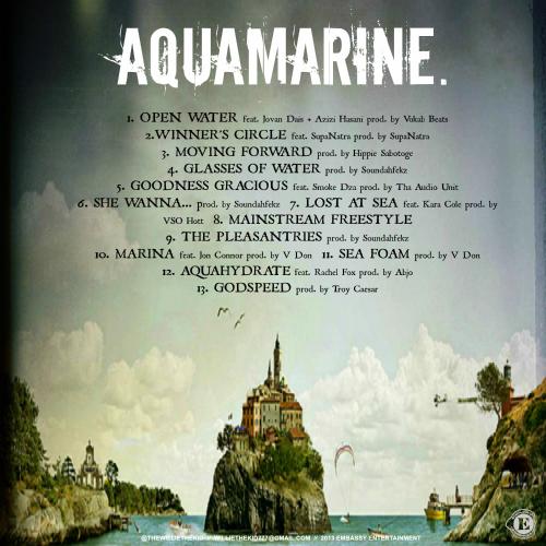 Willie_The_Kid_Aquamarine_bk_500