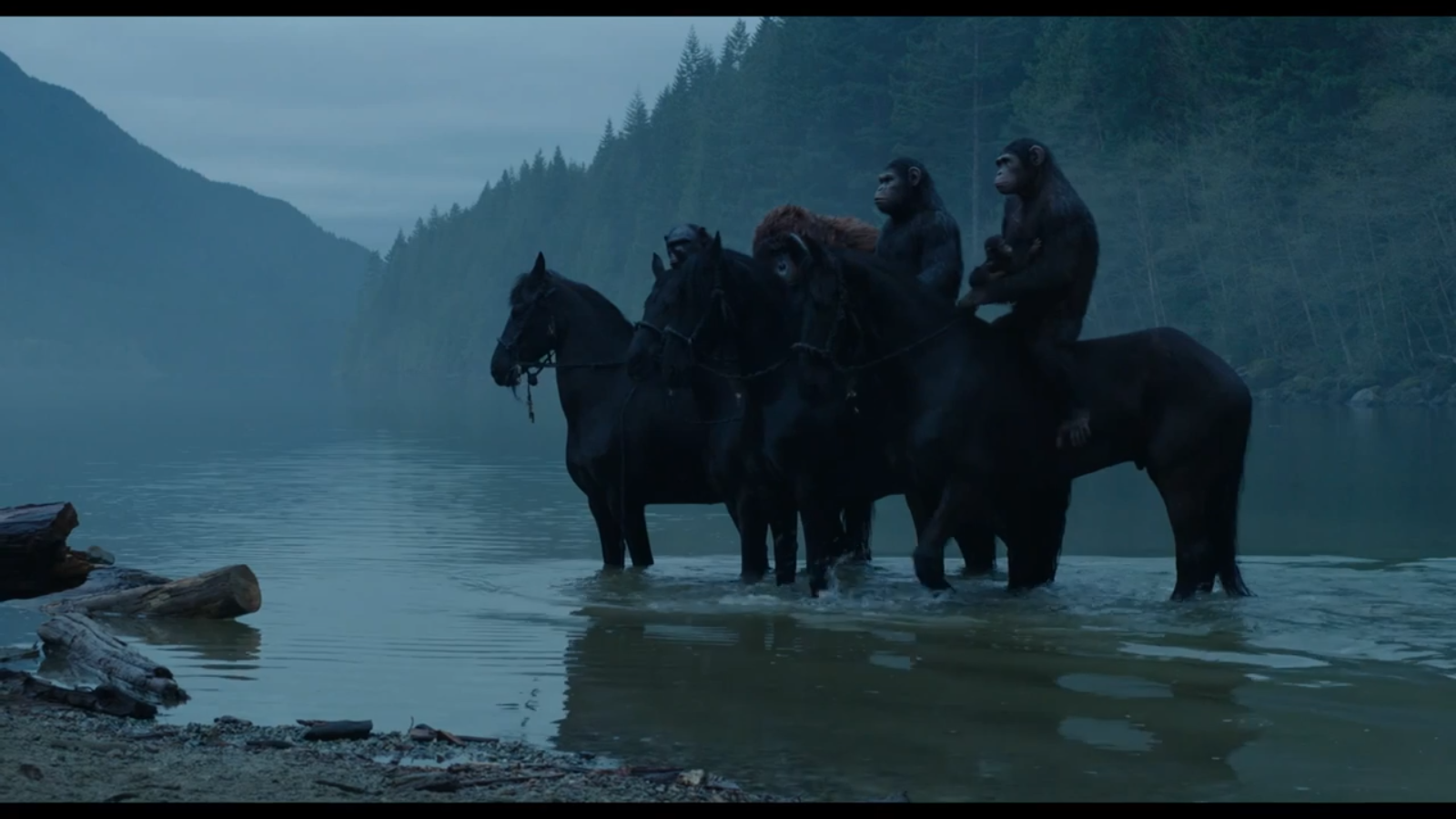 Apes horseback